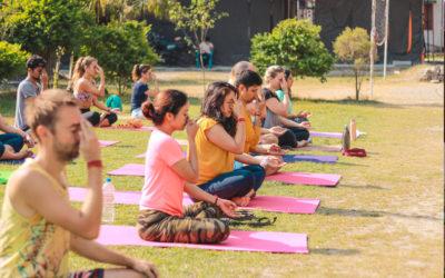 100 Hour Online Yoga Teacher Training Course (Part 2)