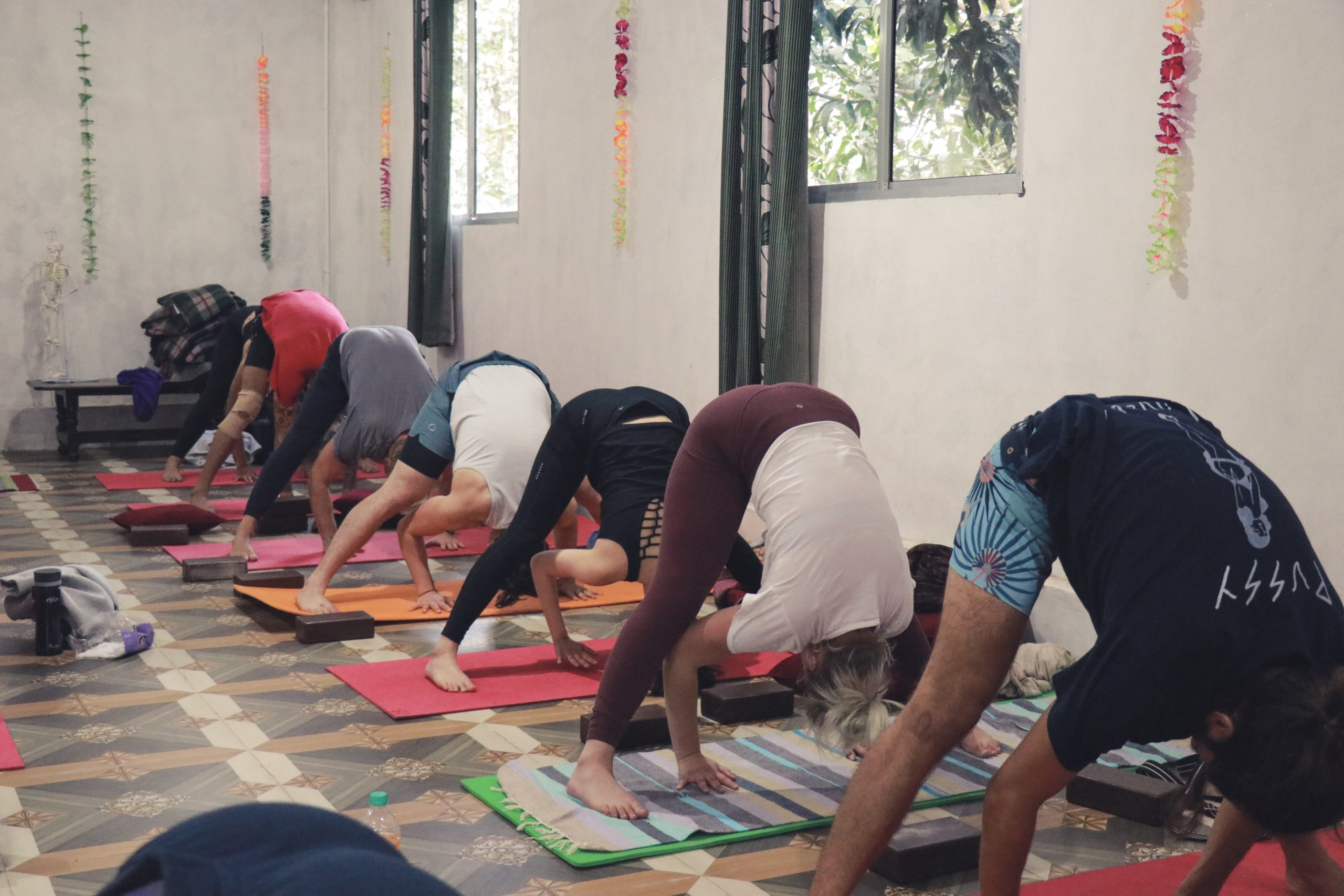 7 Days Online Hatha/ Vinyasa Flow Workshop (Beginner/Intermediate)